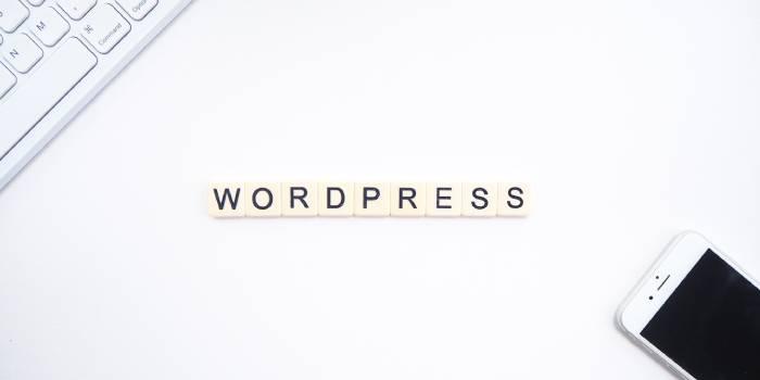scritta wordpress